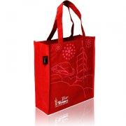 红色帆布手提袋