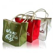 3种样式帆布手提袋